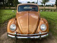 Volkswagen kever cabrio 1966 Woody Special verkocht
