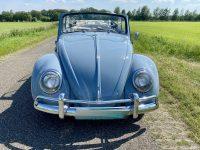 Käfer Cabriolet 1200 baujahr 1964 body off restauriert