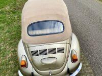 Käfer Cabrio 1302 guter zustand neu rein gekommen