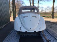 Käfer cabrio 1964 Vanille Weis